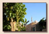 Jarrash - Madaba
