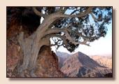 Wadi Rum - Wandertouren