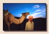Kamelwandern Eilat