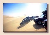 Safari Ost Sahara Ägypten